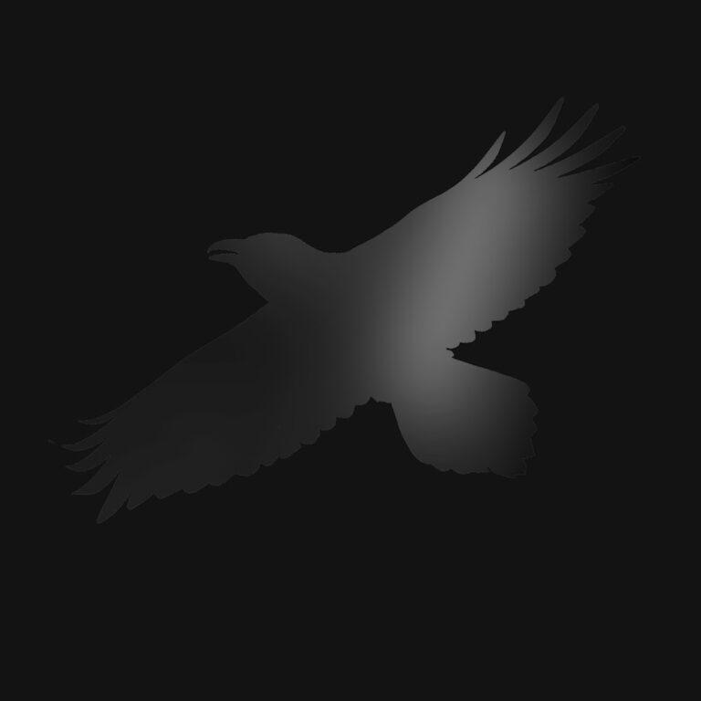Sigur Rós ახალ ალბომს Odin's Raven Magic აქვეყნებს