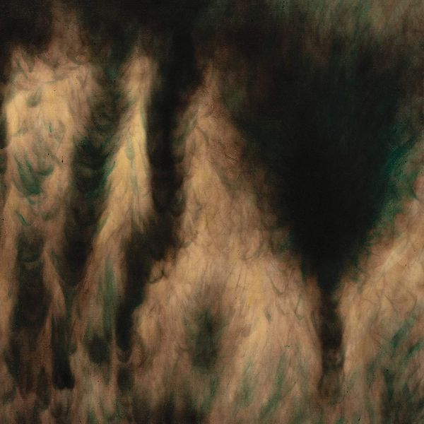 ტრაგედიის გამოგლოვება და სიზმრები, როგორც გამოცდილება უილიამ ბასინსკის ახალ ალბომში – Lamentations